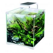 Aquarium kit 16L