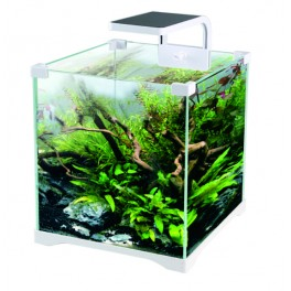 Kit acuario 16L