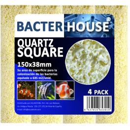 Casa bacterias rectangular 150x38mm