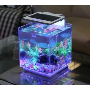 Kit acuario 10L